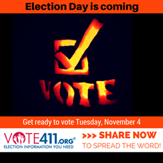 Use VOTE411.org to get the election information you need